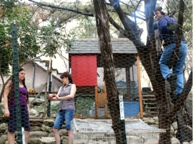 Sound guy is up a tree. Celeste Coburn, Tiffany and Jason Marion.